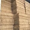 Vetch Hay 8x4x3- 600 x 600 KG Approx Bales & Shedded