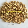 10-15T Samira beans