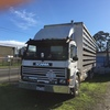 SCANIA 1989 P113M - Table top Bogie Axel, 12 Speed H Pattern Sequential, Engine has been reconditioned.