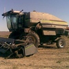 R60 Gleaner Header With 30ft Tin Front Make An Offer