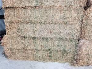 Lucerne Hay Big Bales 8x4x3 740-770kg
