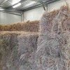 200 Small Square Bales of Pasture Hay