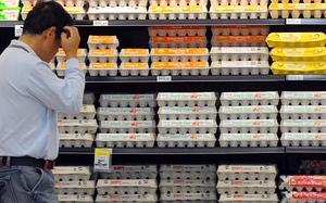 Supermarket war on Eggs unsustainable