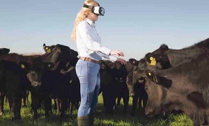 Elders trialing Virtual Reality to add more to Livestock and Real Estate Sales
