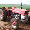 Massey Ferguson 135 Diesel with 2-Stage Clutch