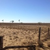 Podcast - Will young farmers change farming practices to deal with drought?