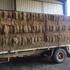 200x Lucerne small squares for sale