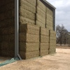 Top Grade Vetch Hay for Sale Delivered in 8x4x3 Square Bales