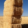 400/mt of Oat Straw, Header trail, 8x4x3