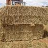 Barley-Vetch Hay
