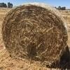 Oaten Hay $34 per roll Ex Farm Good Quality