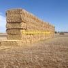 1000 Wheaten Hay 670kg approx 8x4x3 Bales