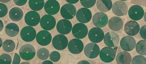 Why coronavirus isn't slowing interest in Agriculture