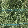 Under Auction - 97 Big Squares Lucerne 8x4x3 - excellent quality - SOLD BY THE BALE - Approximately 100 Bales