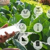 Ag Tech Sunday - Agriculture and food supply chains are ripe to revolutionise