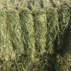 Barley hay, See feed test, baling now, Road train access