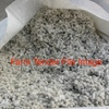 Cotton Seed  x 200 m/t  Wanted