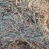 Wheaten Hay 8x4x3 9.9 ME