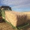 Straw : Barley and Wheat