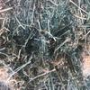 2nd Cut Lucerne Hay in 690kg 8x4x3 Bales - Hay & Fodder