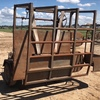 SJ Rural Engineering 240V Electric Hydraulic Tipping Hoof Trimming Crush