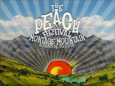 2013 Peach Music Festival