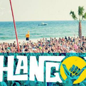 2014 Hangout Music Festival