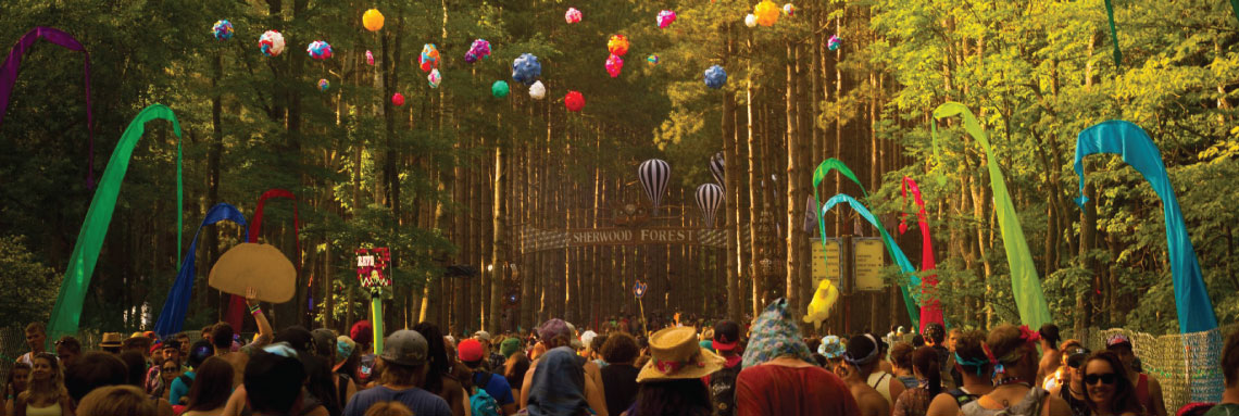Electric Forest 2014 Pictures by Mitch Davis