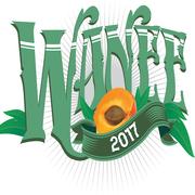 Wanee Festival 2017