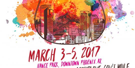McDowell Mountain Music Festival 2017 lineup