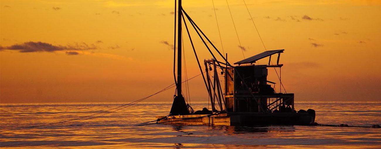Catch Of The Day? Try Lummi Island Wild