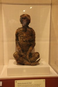 Rosicrucian Egyptian Museum baboon mummy