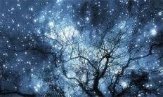 Solstice Stars