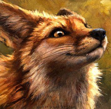 I Am a Fox and You Are Not (c)kentet/Tess Garman