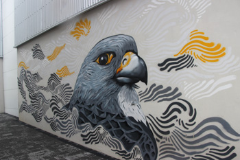 This falcon mural is one of Reykjavik's city-sponsored wall-art pieces.