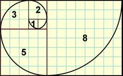 fibonacci spiral. Image by ScienceABC