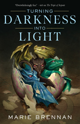 Turning Darkness into Light Cover