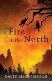 David Bilsborough fantasy book reviews Annals of Lyndormyn, The Wanderer's Tale,  A Fire in the North