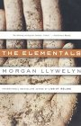 Morgan Llywelyn The Elementals review