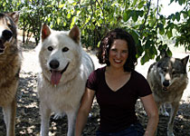 Dorothy Hearst Wolf Chronicles