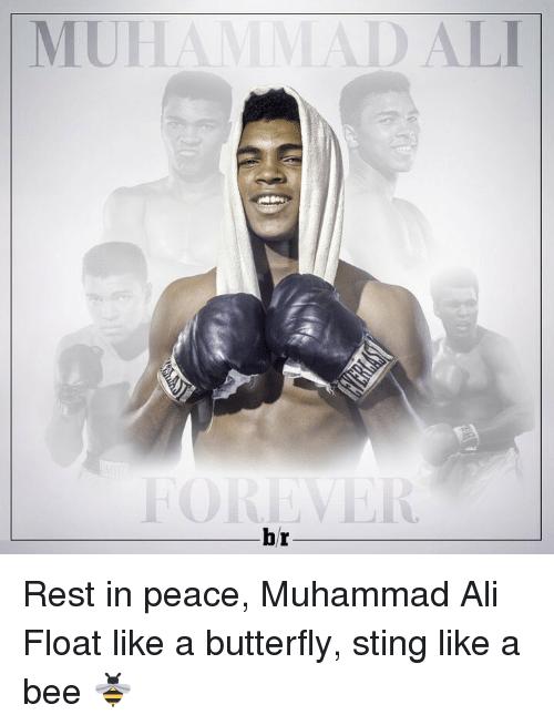 rip restinpeace sports boxing legends athlete muhammadali ali thegoat goat greatness