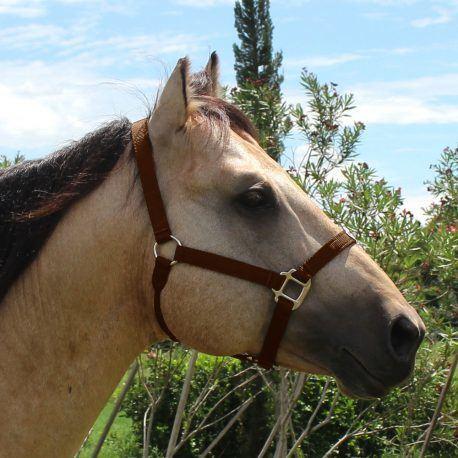 Cabresto Boots Horse Marrom