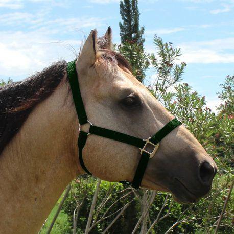 Cabresto Boots Horse Verde Escuro