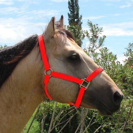 Cabresto Boots Horse Vermelho