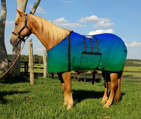 Capa Protetora com Barrigueira Boots Horse Degrade Azul e Verde