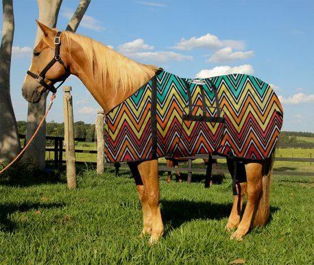 Capa Protetora com Barrigueira Boots Horse Zig Zag