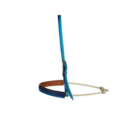Gamarra Boots Horse Degrade Azul