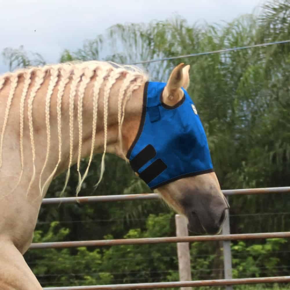 Máscara Para Cavalo Boots Horse Azul