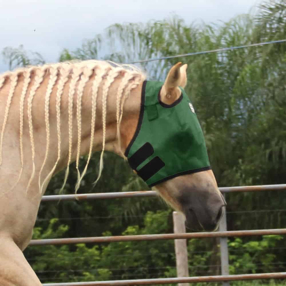 Máscara Para Cavalo Boots Horse Verde