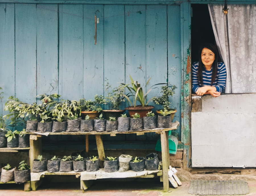 The Woman Who Sells Little Plants.